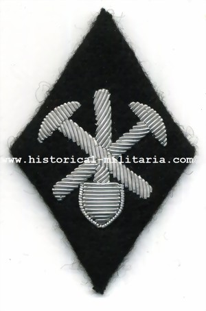 �rmelraute SS F�hrer Pionierschule Eisleben - SS diamond Officer patch for Pioneer School Eisleben mounted on buckram